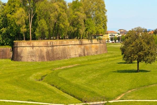 Massaggi Lucca, per il tuo relax a Lucca un massaggiatore per donne esperto potrà portarti a trovare il benessere a Lucca e provincia. I massaggi tantrici, emozionali, percorsi tantra a Lucca ti ridanno la conoscenza del tuo essere donna.